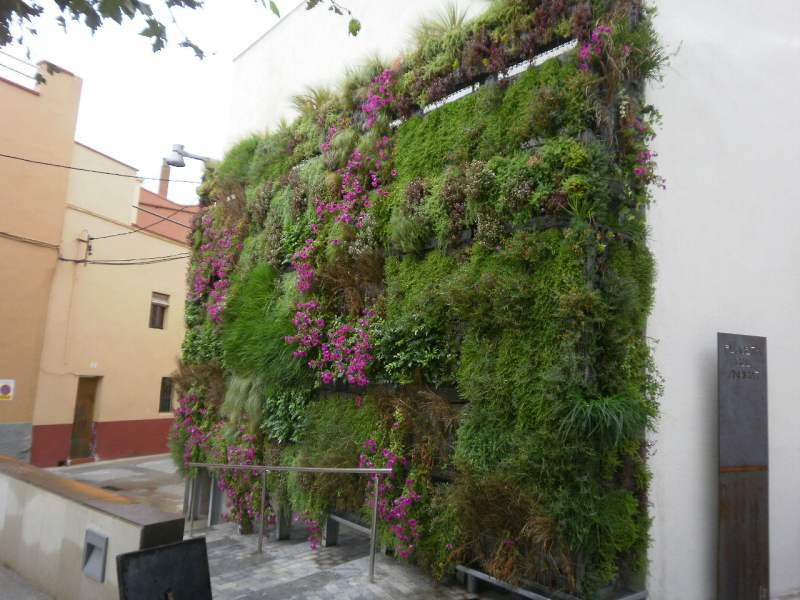 Pared vegetal Babylon ® en Vilabertran, Girona.